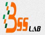 B.S.S. Lab
